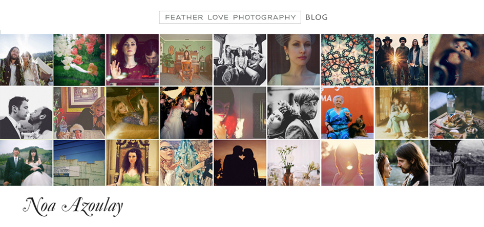the feather love photography blog logo